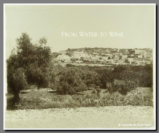 Cana - Da Água ao Vinho
